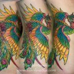 татуировка феникс/ phoenix tatto
